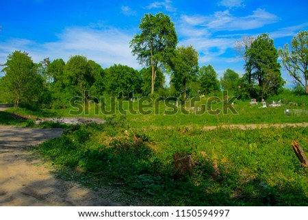An old abandoned cemetery, crosses and graves overgrown with tall grass against the backdrop of tall trees and a blue sky. #1150594997
