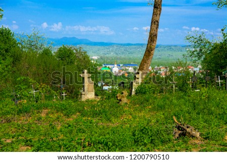 An old abandoned cemetery, crosses and graves overgrown with tall grass against the backdrop of tall trees and a blue sky. #1200790510