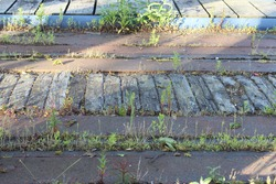 An old abandoned docks bridge deck with corroded iron deck plates and railway tracks, plants and grass have taken hold in the spaces where wheels once ran.  Decaying wooden timbers fill the four foot