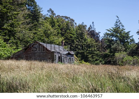 An old, abandoned farm house surrounded by overgrown grass