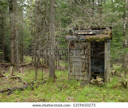 An old abandoned outhouse or privy falling down in the forest.