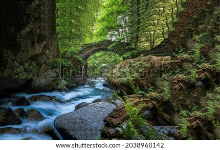 An old arched bridge over a mountain stream in the forest. Forest river wild. Wilderness river bridge. Bridge over forest river wild