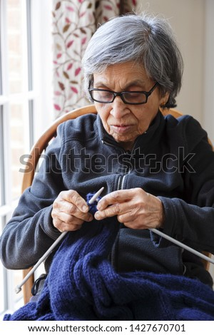 An old Asian Indian woman knits. Depicts the elderly engaged in a hobby or pastime #1427670701