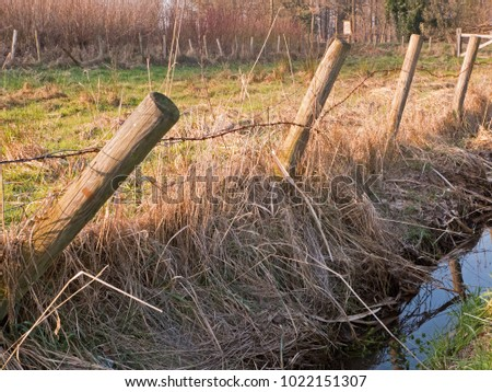 an old barbed wire fence surrounds a pasture, in front of which flows a narrow stream ditch