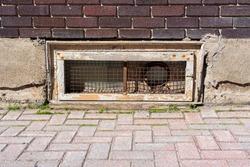 An old basement window in a brick wall