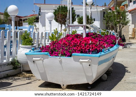 An old boat transformed into a flower display,displaying a beautiful arrangement of  petunias in Halkidiki, Greece.  #1421724149