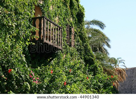 An old building covered with plants- clematis, balcony- Rhodes, Greece