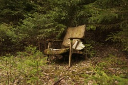 An old chair in the woods. Unnecessary furniture, garbage.
