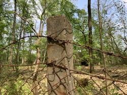 An old damaged fence with a metal mesh in the forest