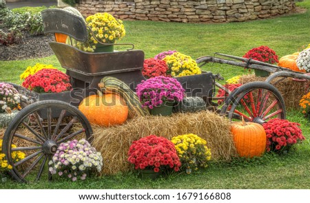 Photo of  An old fashion wagon with mums, pumpkins and gourds