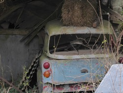 An old, forgotten blue and white car sitting in a dark overgrown disused barn. Pale blue and dusty with a straw bale on its roof. The window has fallen out and only the back lights are left.