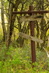 An old guidepost in the forest