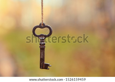 An old key hangs on a tree branch, against the background of a forest road. Blurred background, space for text #1526159459