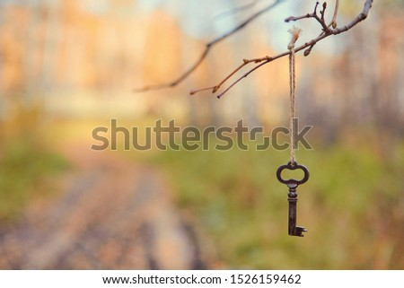 An old key hangs on a tree branch, against the background of a forest road. Blurred background, space for text #1526159462