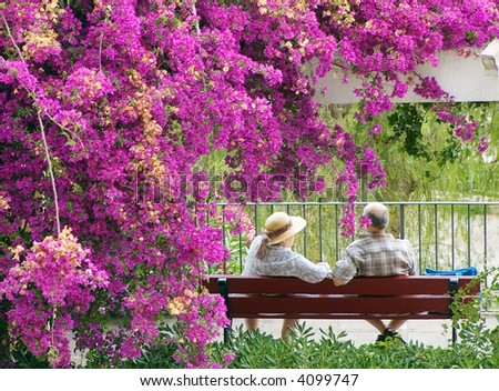 an old pair of lovers sitting on the bench