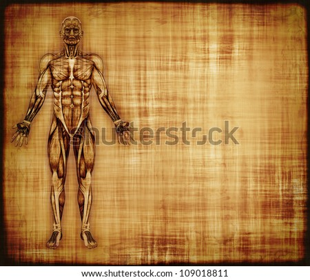 An old parchment featuring the muscles of the human body - 3d render with digital painting.