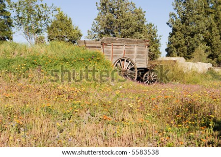 An old pioneer wagon abandoned in a meadow of brightly colored wild flowers results in a pastoral scene of the American Wild West.