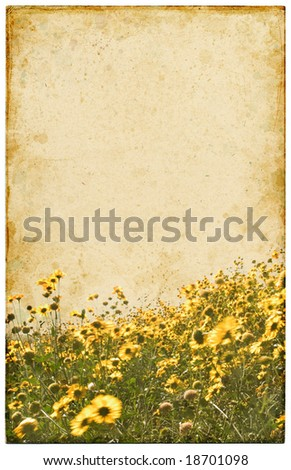 An old postcard with a faded yellow flower foreground.