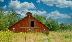An old red barn in a field of weeds