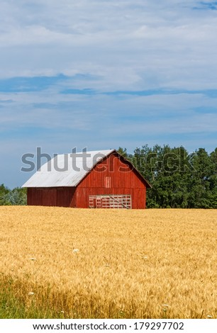 an old red barn in a golden...