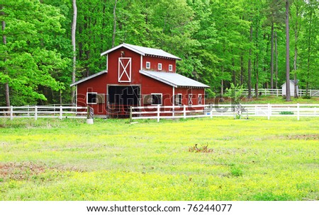 An old red horse barn in the woods among a buttercup field field during a spring day