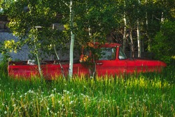 An old red truck partially hidden in tall green grass and trees in a summer landscape