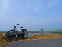 An old roadster bicycle or onthel owned by a farmer parked on the edge of a rice field.