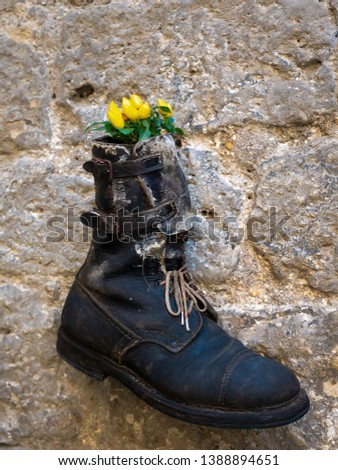 An old shoe turned into a flower vase #1388894651