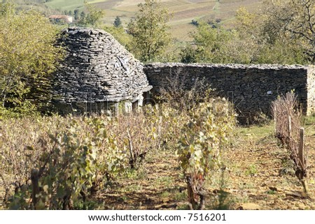An old stone-made shepherd shelter typical of the Beaujolais region