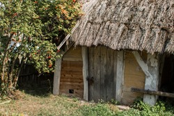 an old thatched cottage in the forest