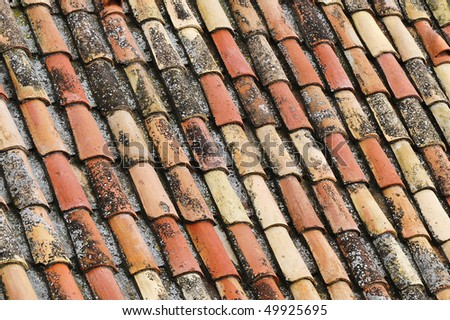 An old tile roof with moss growing, typical design and construction of the late 19th century.