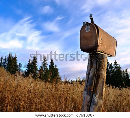 An old, weathered rusty U.S. mailbox in tall grass with a background of spruce trees against a bright blue sky with clouds