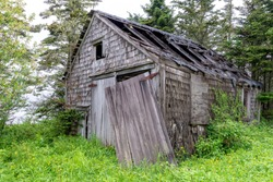 An old, weathered, shack in the woods. Wood shingle sides and wood doors. Most of the roof caved in, and one of the doors is hanging loose. Vegetation starting to grow over it. Overcast sky.