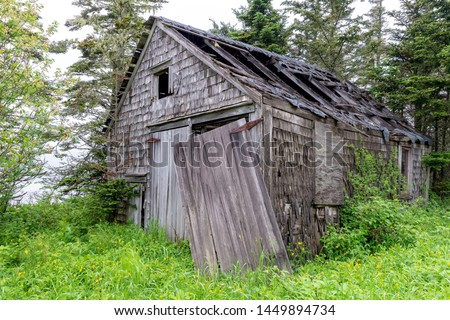 An old, weathered, shack in the woods. Wood shingle sides and wood doors. Most of the roof caved in, and one of the doors is hanging loose. Vegetation starting to grow over it. Overcast sky. stock photo