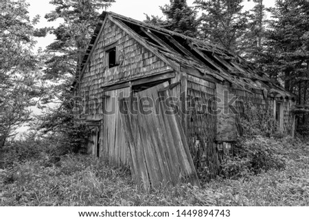 An old, weathered, shack in the woods. Wood shingle sides and wood doors. Most of the roof caved in, and one of the doors is hanging loose. Vegetation growing over it. Overcast sky. Black & white. stock photo