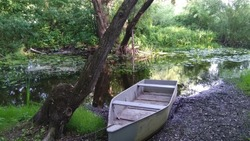 An  old wooden boat on the bank of the small river. Loan rowboat, fishing, backwater, vessel, small ship, chain, reflection.