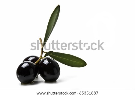 An olive branch with three premium olives and leaves isolated on a white background.