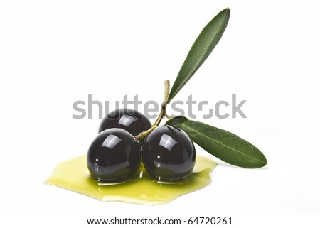 An olive branch with three premium olives on some olive oil on a white background.