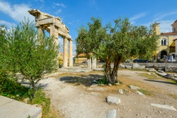 An olive tree grows near the ancient Gate of Athena Archegetis in the Roman Agora in Athens, Greece.