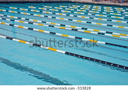 olympic size swimming pool gallery for olympic size swimming pool