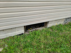An open and exposed hole under a home. This hole in the foundation is where a window used to be, but is now a space for critters and vermin to enter the house.