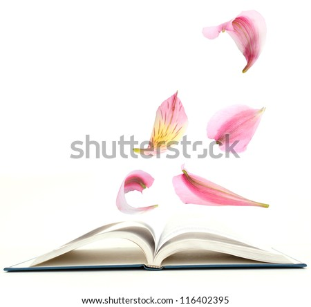 An open book with flowers concept