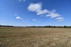 An open field at the Pea Ridge National Battlefield in Garfield, Arkansas. The area was used in a pivotal Civil War battle.