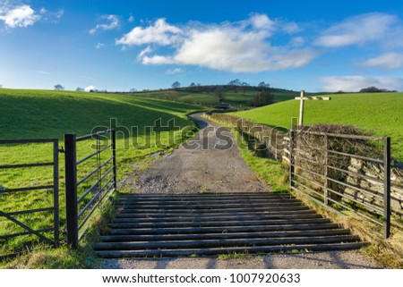 An open gate and a cattle grid leading to a country track running through green fields in Northern england