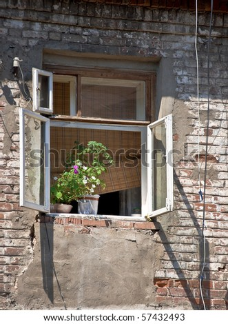 An open window in an old brick wall. On the windowsill is houseplant. Detail of the province of the court of Russia. Beggars and poor living conditions. Outdoor.