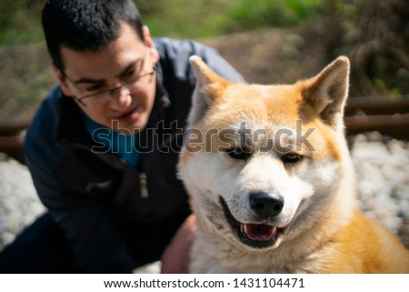 An orange akita dog is in the focus and the man with glasses kneeling in the back is blurred. The background is blurred as well. #1431104471