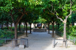 An orange tree arbour surrounding a fountain in the Jardins de Rubio i Lluch (Rubio Illuch Gardens) in the courtyard of an old hospital building in the gothic quarter of Barcelona, Catalonia, Spain.