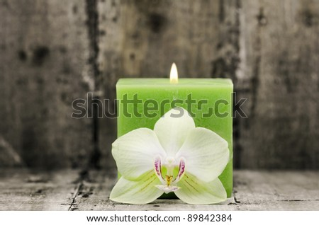 an orchid flower with a green candle in the background