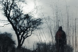 An out of focus hiker next to a tree in the background, With a close up of grasses. With a moody, bleak winters day.