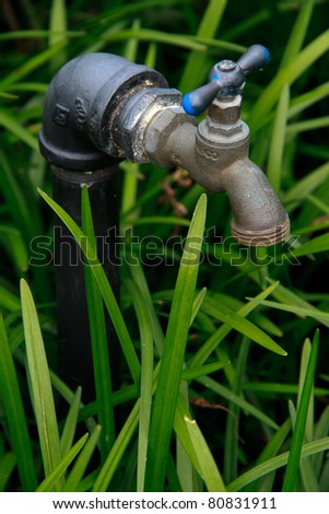 An outdoor water faucet used to attach a hose to for outdoor watering needs